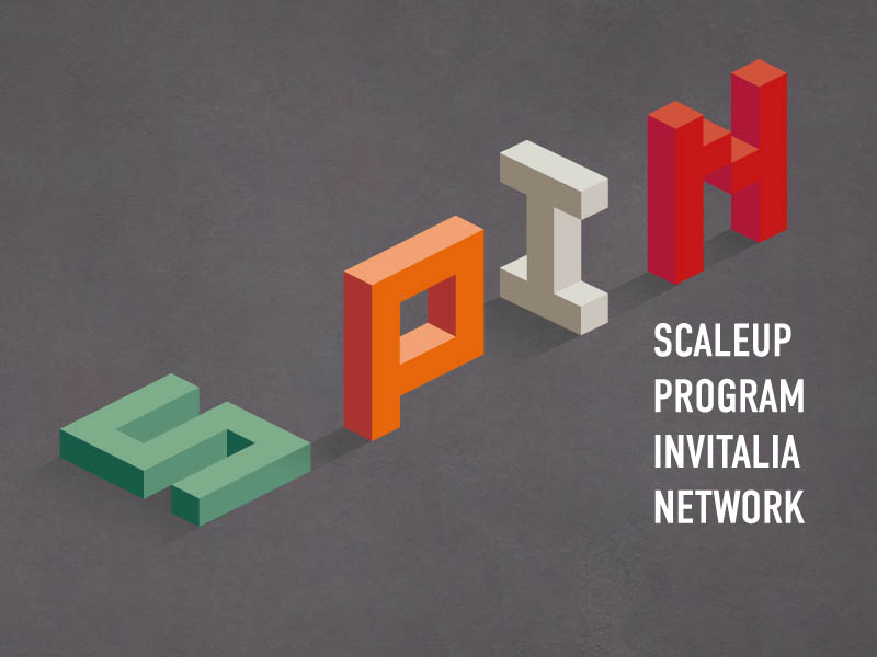 spin-scaleup-program-invitalia-network-valore-consulting